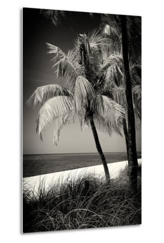 Palms on a White Sand Beach in Key West - Florida-Philippe Hugonnard-Metal Print