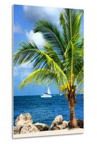 Paradise Palm Tree with a Sailboat on the Ocean - Florida-Philippe Hugonnard-Metal Print