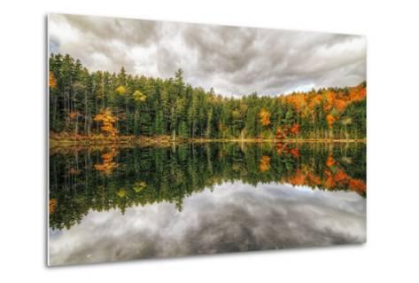 Pond Reflection, White Mountains, New Hampshire-Vincent James-Metal Print