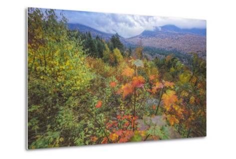 Autumn Viewpoint, White Mountains, New Hampshire-Vincent James-Metal Print