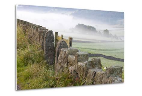Stone Fence, Burnsall, Yorkshire Dales National Park, Yorkshire, England, United Kingdom, Europe-Miles Ertman-Metal Print