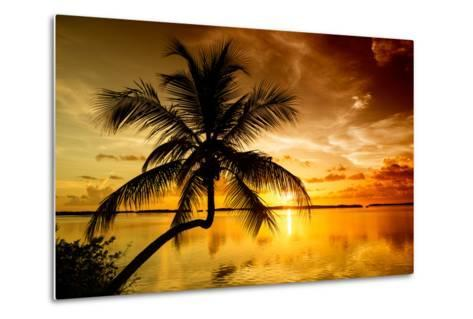 Palm Paradise at Sunset - Florida - USA-Philippe Hugonnard-Metal Print