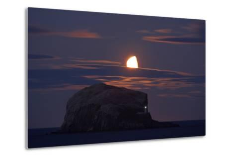 Northern Gannet (Morus Bassanus) Colony, Bass Rock with the Moon Rising, Firth of Forth, Scotland- Green-Metal Print