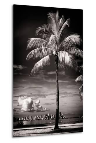 Palm Tree overlooking Downtown Miami - Florida-Philippe Hugonnard-Metal Print