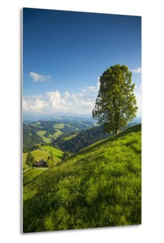 Emmental Valley, Berner Oberland, Switzerland-Jon Arnold-Metal Print