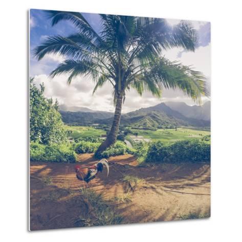 Hanalei Chicken Landscape, Kauai Hawaii-Vincent James-Metal Print