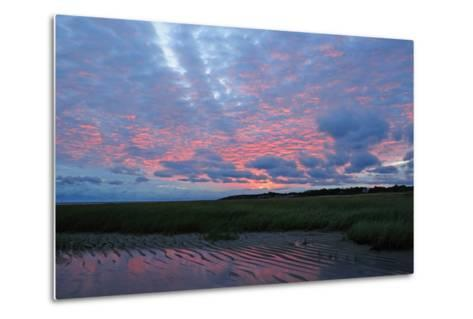 Sunrise at the Payne's Creek Intertidal Zone-Darlyne A^ Murawski-Metal Print