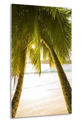 Palm Trees and Tropical Beach, Southern Mahe, Seychelles-Jon Arnold-Metal Print
