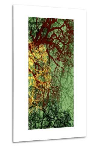 Entangle II-James Burghardt-Metal Print