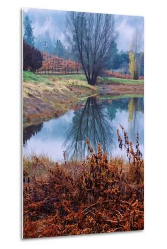 Autumn Pond Reflections, Calistoga Napa Valley-Vincent James-Metal Print