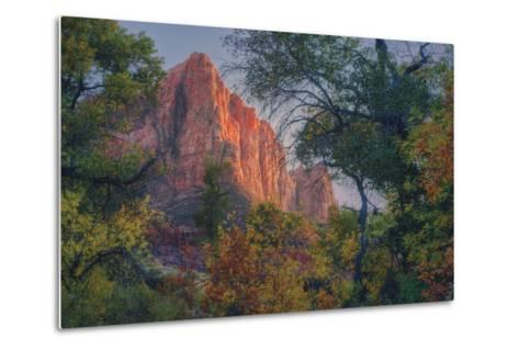 Watchman and Fall Frame, Zion Southwest Utah-Vincent James-Metal Print