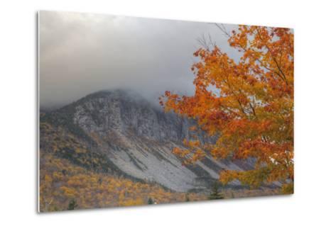 Foggy Autumn Design at White Mountain, New Hampshire-Vincent James-Metal Print