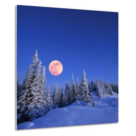 Winter Landscape in the Mountains at Night. A Full Moon and a Starry Sky. Carpathians, Ukraine-Kotenko-Metal Print