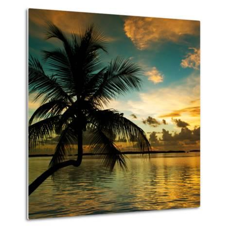 Silhouette of Palm Tree at Sunset-Philippe Hugonnard-Metal Print