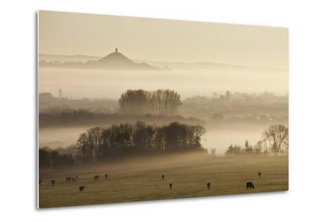View Towards Glastonbury Tor from Walton Hill at Dawn, Somerset Levels, Somerset, England, UK-Guy Edwardes-Metal Print