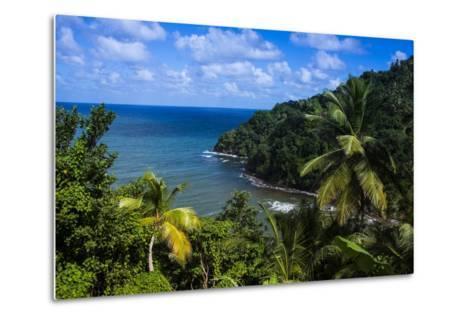Pagua Bay in Dominica, West Indies, Caribbean, Central America-Michael Runkel-Metal Print