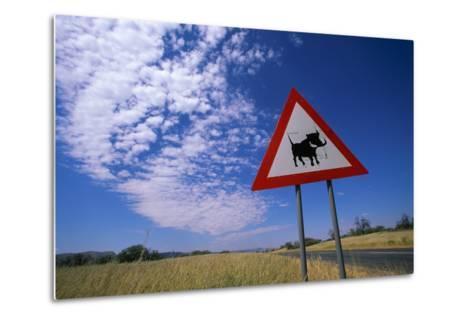 Warthog Crossing Sign-Paul Souders-Metal Print