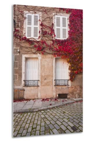 Autumn Leaves in Noyers-Sur-Serein-Julian Elliott-Metal Print