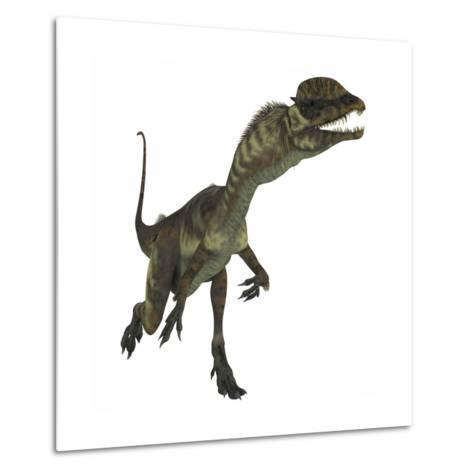 Dilophosaurus Dinosaur-Stocktrek Images-Metal Print
