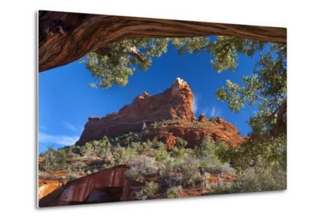 USA, Arizona, Sedona. Juniper Tree Frames Mountain View-Jaynes Gallery-Metal Print