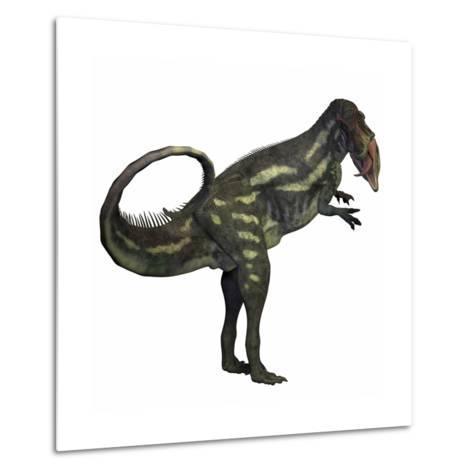Allosaurus Dinosaur-Stocktrek Images-Metal Print
