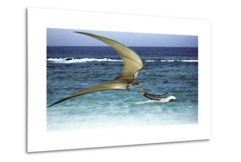 Pterodaustro Skimming the Water for Crustaceans-Stocktrek Images-Metal Print