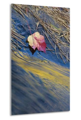 USA, New York, Adirondack Mountains. Reflections in Buttermilk Falls-Jaynes Gallery-Metal Print