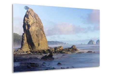 Wa, Olympic National Park, Rialto Beach, Seastack-Jamie And Judy Wild-Metal Print