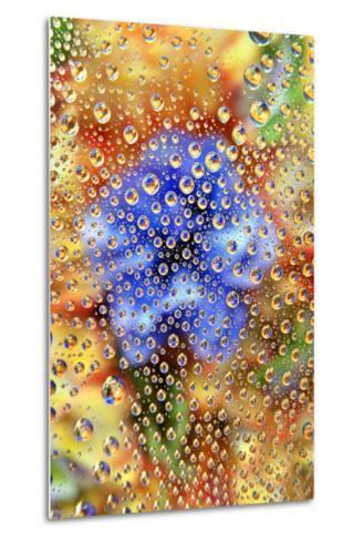 USA, Colorado, Lafayette. Water Bubbles on Glass Table Top-Jaynes Gallery-Metal Print
