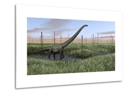 Mamenchisaurus Walking Through Wetlands-Stocktrek Images-Metal Print