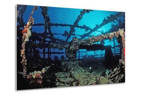 Scuba Diver Diving on Umbria Shipwreck, Sudan, Africa, Red Sea, Wingate Reef-Reinhard Dirscherl-Metal Print
