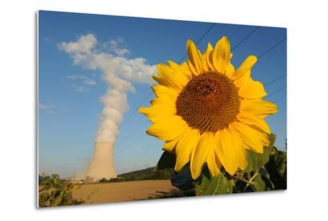 Sunflower, in Front of a Nuclear Power Plant--Metal Print