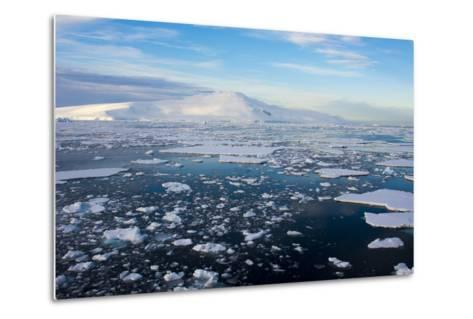 Antarctica. Near Adelaide Island. the Gullet. Ice Floes and Brash Ice-Inger Hogstrom-Metal Print