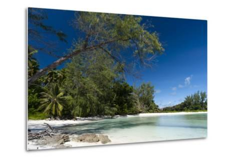 Denis Island, Seychelles-Sergio Pitamitz-Metal Print