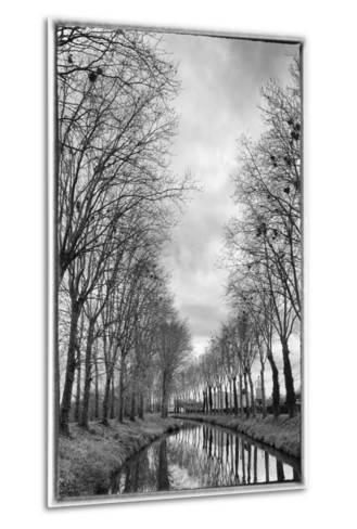 France, Burgundy, Nievre. Trees with Bird Nests on the Nivernais Canal-Kevin Oke-Metal Print