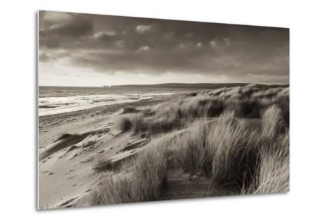 Windswept Sand Dunes on the Beach at Studland Bay, with Views Towards Old Harry Rocks, Dorset-Adam Burton-Metal Print