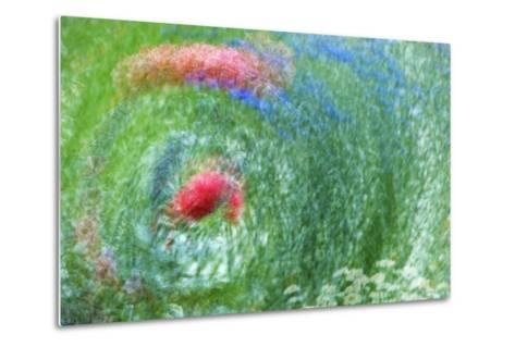 USA, Washington, Whidbey Island. Montage of Flowers and Greenery-Jaynes Gallery-Metal Print