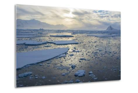Antarctica, Near Adelaide Island. the Gullet. Ice Floes at Sunset-Inger Hogstrom-Metal Print