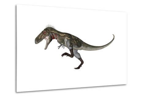 Nanotyrannus Dinosaur Roaring-Stocktrek Images-Metal Print