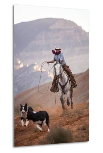 Cowgirl at Full Gallop with Cowdogs Leading Way-Terry Eggers-Metal Print