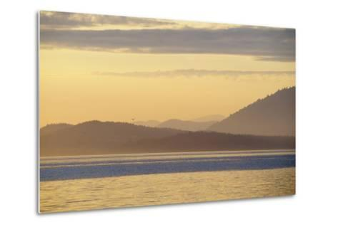 Canada, B.C, Sidney Island. Layered Yellow Islands with Bird Flying-Kevin Oke-Metal Print
