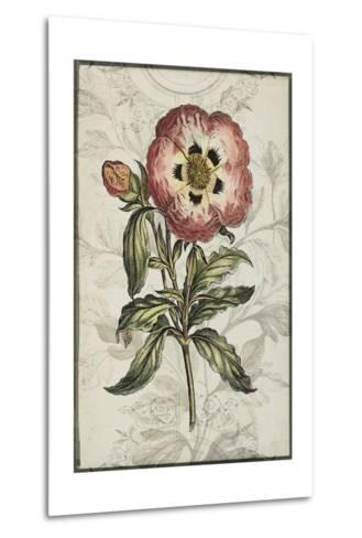 Keepsake Floral II-Jennifer Goldberger-Metal Print
