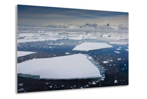 South Antarctic Circle, Near Adelaide Island. the Gullet. Ice Floes-Inger Hogstrom-Metal Print