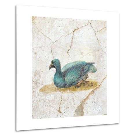 Blue Feathered Duck, C. 10-45--Metal Print