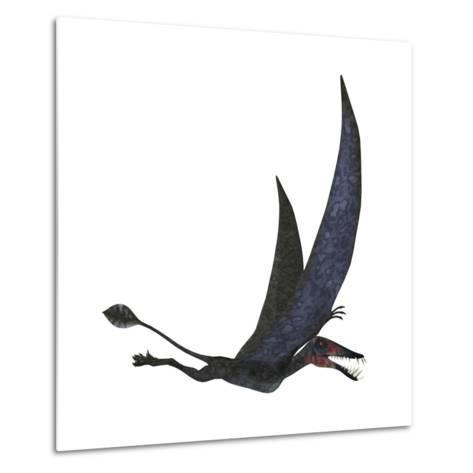 Dorygnathus Pterosaur from the Jurassic Period-Stocktrek Images-Metal Print
