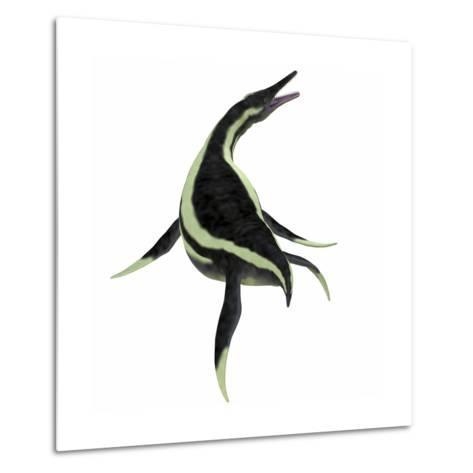Dolichorhynchops Marine Reptile-Stocktrek Images-Metal Print