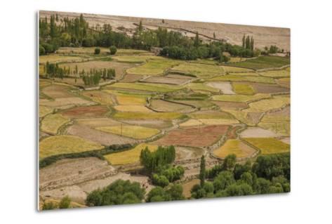 Chemde Monastery, near Karu, Corn Field around Monastery-Guido Cozzi-Metal Print