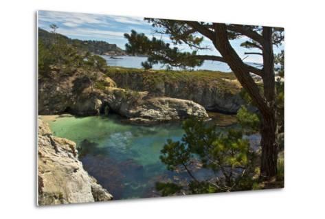 China Cove, Point Lobos State Reserve, Carmel, California, USA-Michel Hersen-Metal Print