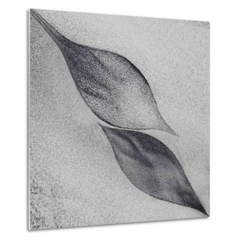 Shaped by a Creative Wind-Piet Flour-Metal Print
