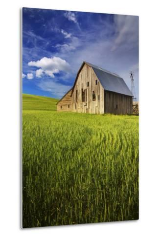 Old Barn Surrounded by Spring Wheat Field, Pr-Terry Eggers-Metal Print